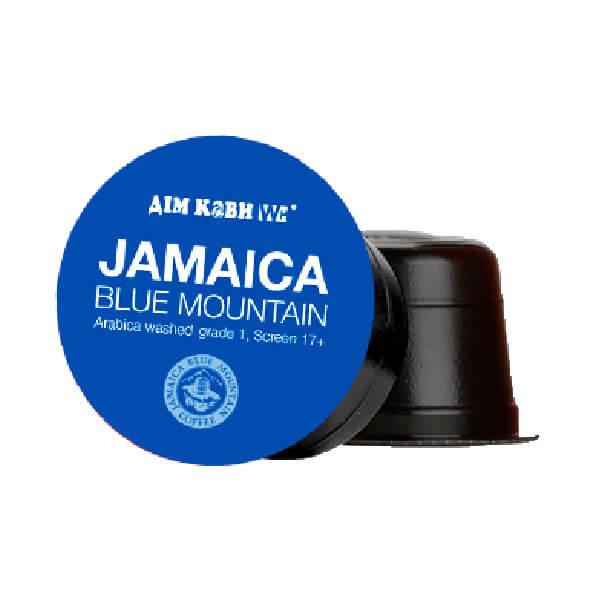 jamaica-600-600