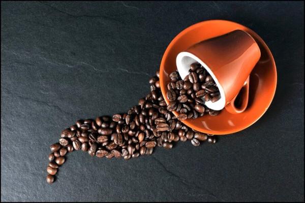 Виды и сорта кофе: как выбрать?