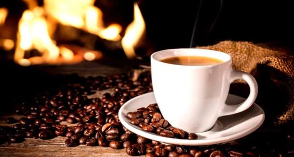 Cafe Imports выпустили серию образовательных видео о кофе